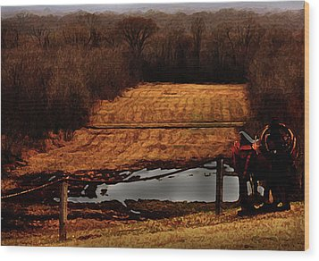 Saddle Up Enjoy The View Wood Print by Kim Henderson