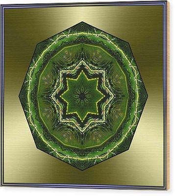 Sago Palm Star Wood Print