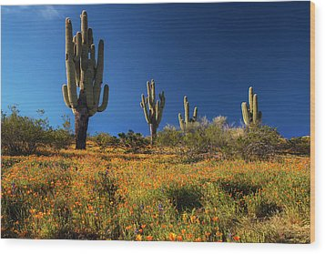 Wood Print featuring the photograph Saguaro Cactus And Poppies Arizona by Dave Dilli