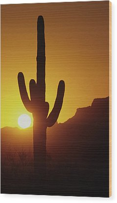 Saguaro Cactus And Sunset Wood Print