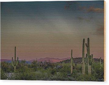 Saguaros Salute Rays Rising Wood Print