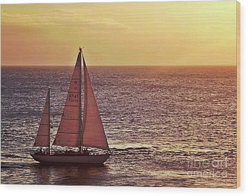 Sail Away Wood Print by Maria Arango