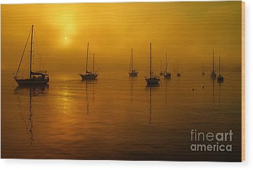Sail Boats In Fog Wood Print