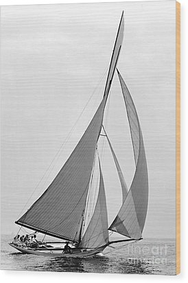 Sailboat Hawk 1891 Wood Print by Padre Art