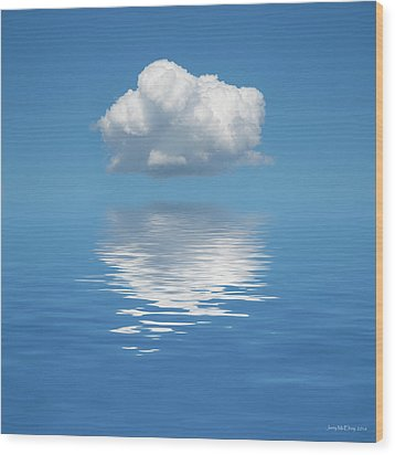 Sailing Away Wood Print by Jerry McElroy