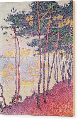 Sailing Boats And Pine Trees Wood Print by Paul Signac