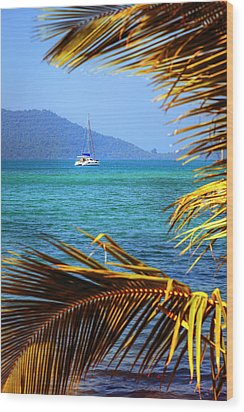 Wood Print featuring the photograph Sailing Vacation by Alexey Stiop