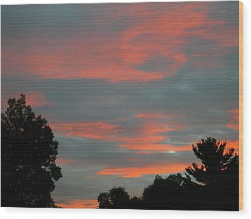 Wood Print featuring the photograph Sailor's Delight by Randy Rosenberger