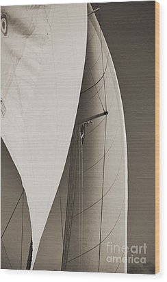 Sails Wood Print by Dustin K Ryan
