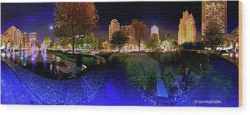 Saint Louis City Garden Panorama Wood Print by David Coblitz
