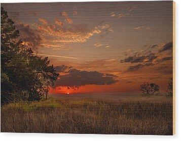Saint Simons Island Salt Marsh Twilight Wood Print