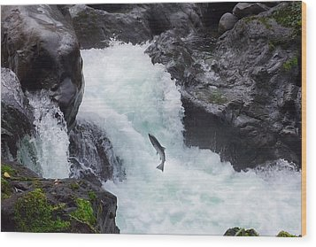 Salmon Cascades Wood Print by Crystal Hoeveler