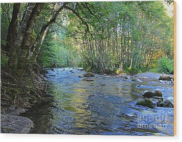 Salmon Creek Majestic  Wood Print by Tim Rice