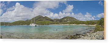 Wood Print featuring the photograph Salt Pond Bay Panoramic by Adam Romanowicz
