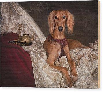 Saluki Dog Wood Print