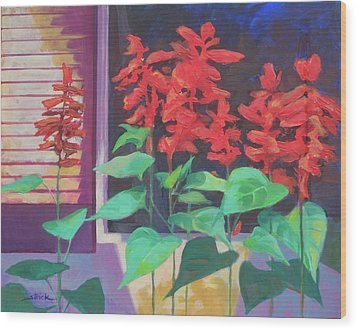 Salvia In The Windowbox Wood Print by Carol Strickland