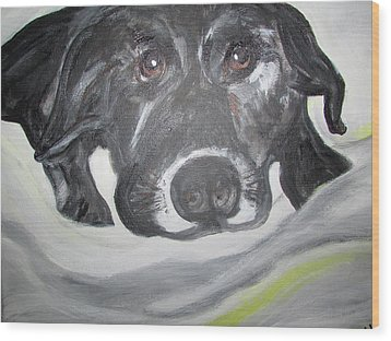 Sweet Sami Black Lab Wood Print