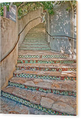 San Antonio Riverwalk Stairway Wood Print by David and Carol Kelly