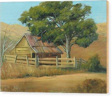 San Joaquin Barn Wood Print by Sally Seago