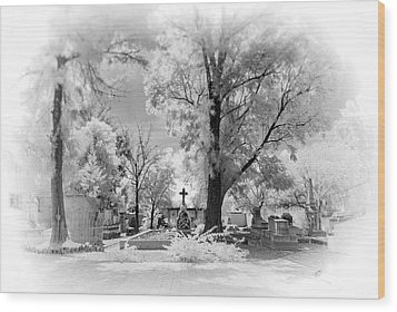 Wood Print featuring the photograph San Jose De Dios Cemetery by Sean Foster