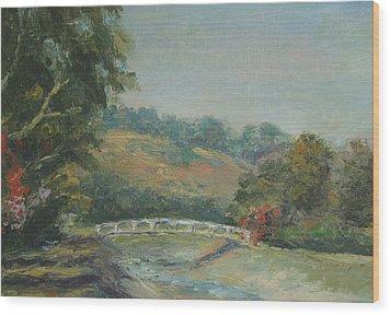 San Juan Creek Wood Print