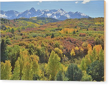 Wood Print featuring the photograph San Juan Mountains From Dallas Divide by Ray Mathis