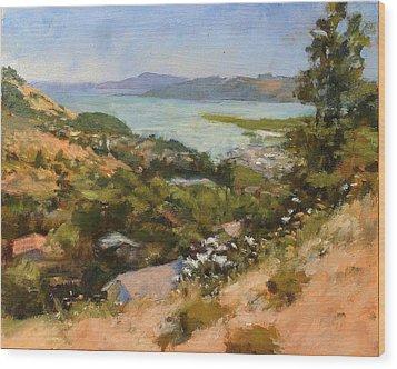 San Rafael Bay From Via La Cumbre, Greenbrae, Ca Wood Print by Peter Salwen