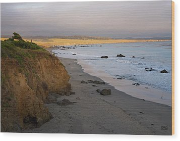 San Simeon Coastal II Color Wood Print by David Gordon