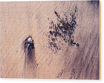 Wood Print featuring the photograph Sand Crab Marks 2 by Lyle Crump