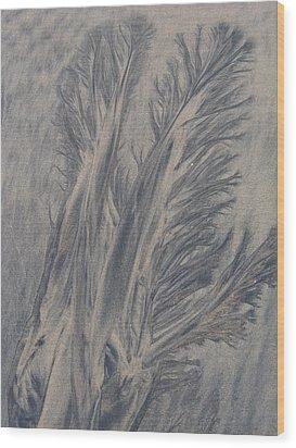 Sand Drawing 1 Wood Print by Kevin Callahan