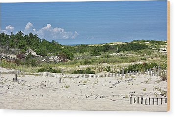 Wood Print featuring the photograph Sand Dune In Cape Henlopen State Park - Delaware by Brendan Reals