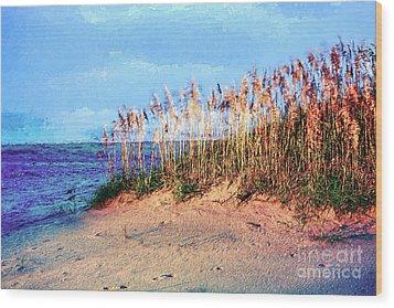 Sand Dune Sea Oats Sunrise Outer Banks Ap Wood Print by Dan Carmichael