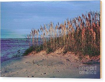 Sand Dune Sea Oats Sunrise Outer Banks Wood Print by Dan Carmichael