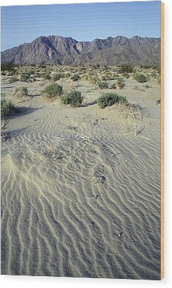 Sand Dunes And San Ysidro Mountains Wood Print by Rich Reid