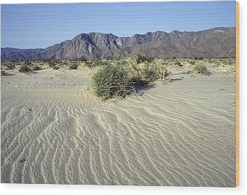 Sand Dunes & San Ysidro Mountains At El Wood Print by Rich Reid