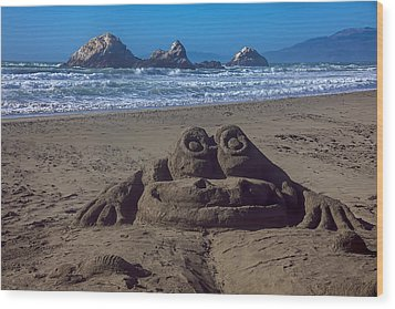 Sand Frog  Wood Print by Garry Gay