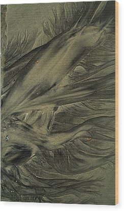 Sand Patterns Myths Of The Ages Wood Print by Todd Breitling