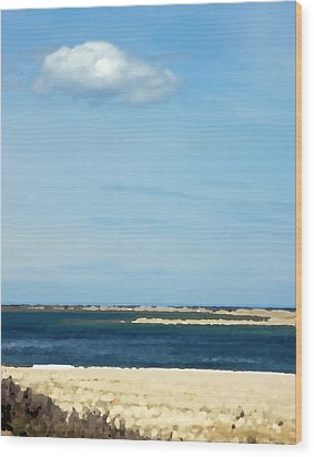Wood Print featuring the photograph Sand Sea And Sky by Brooke T Ryan