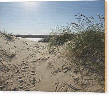 Sand Tracks Wood Print by Tara Lynn