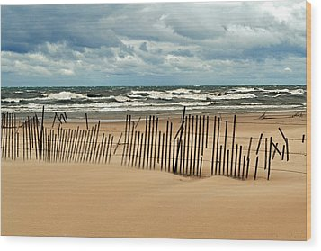 Sandblasted Wood Print by Michelle Calkins