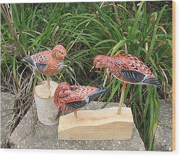 Sanderling Trio Wood Print