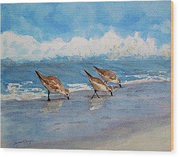 Sanderlings Wood Print