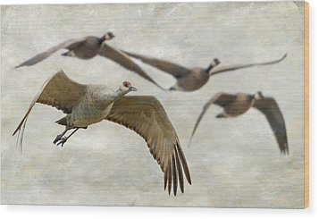 Wood Print featuring the photograph Sandhill Crane And Company by Angie Vogel