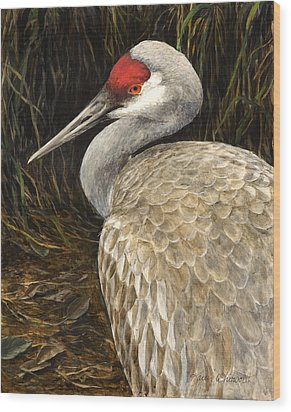 Wood Print featuring the painting Sandhill Crane - Realistic Bird Wildlife Art by Karen Whitworth