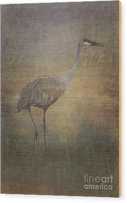 Sandhill Crane Watercolor Wood Print
