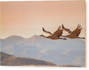 Sandhill Cranes Flying Over New Mexico Mountains - Bosque Del Apache, New Mexico Wood Print by Ellie Teramoto