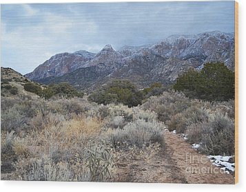Sandia Mountains Storm Winter Landscape Wood Print by Andrea Hazel Ihlefeld