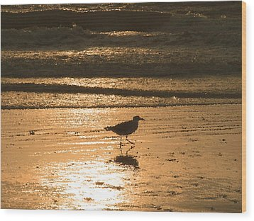 Wood Print featuring the photograph Sandpiper by Peg Urban