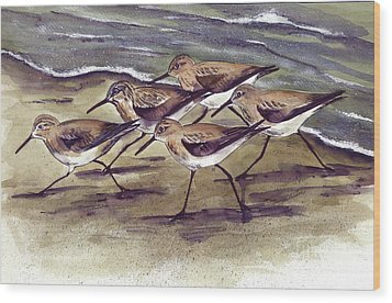 Sandpipers Wood Print