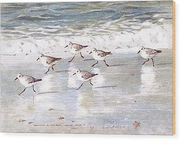 Sandpipers On Siesta Key Wood Print